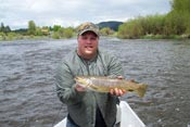 Williamson River Brown Trout